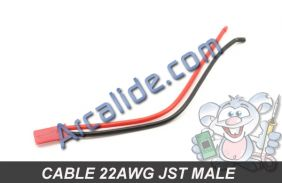 cable bec jst male