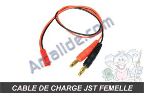 cable charge jst female