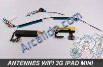 kit antenne ipad mini