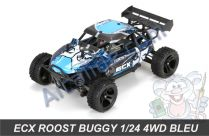 ecx roost buggy 1/24 b