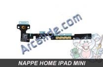 nappe home ipad mini